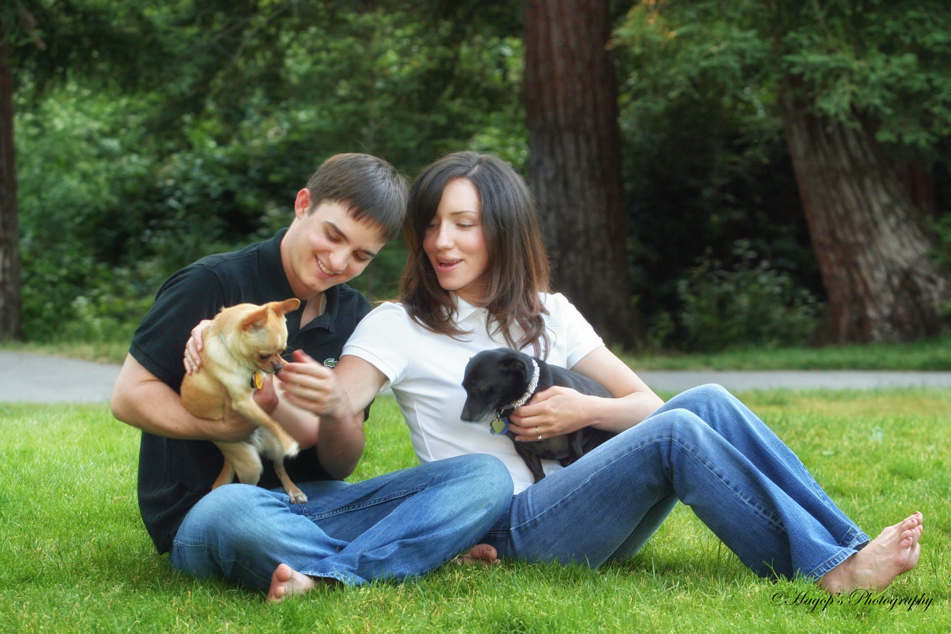 engaged couple with their two dogs