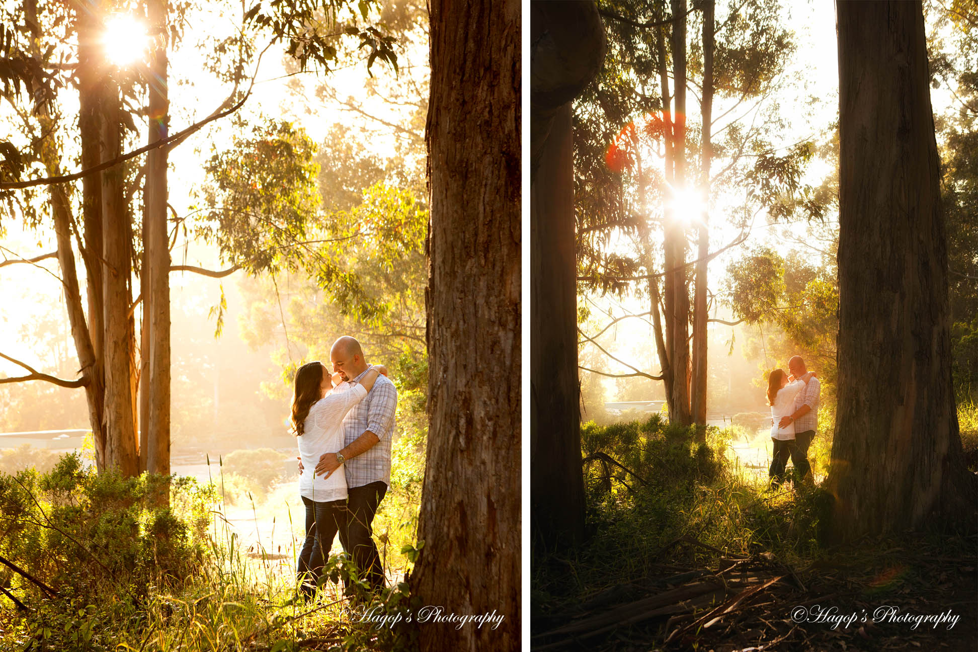 composite photos for their engagement album