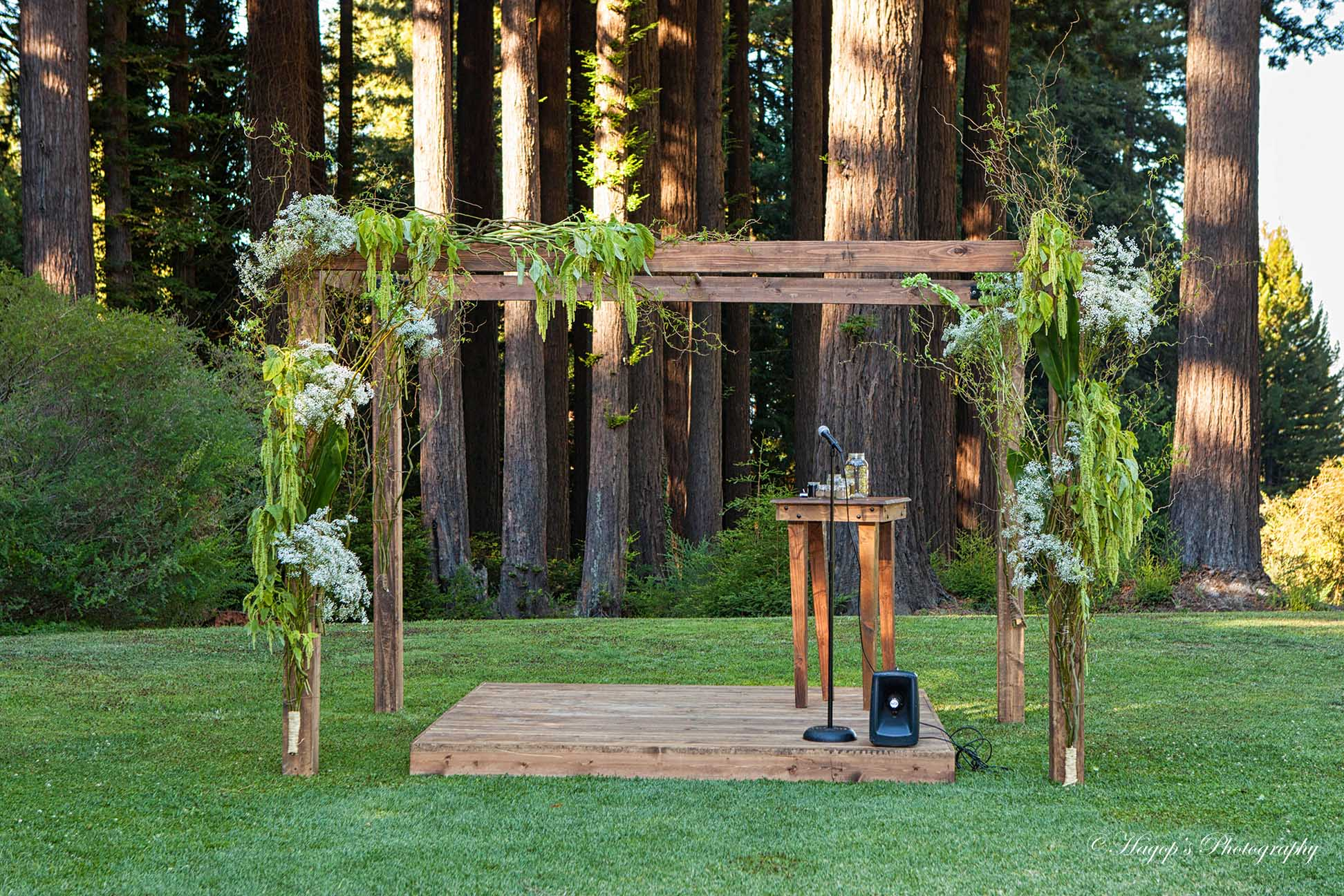 arbor for the ceremony