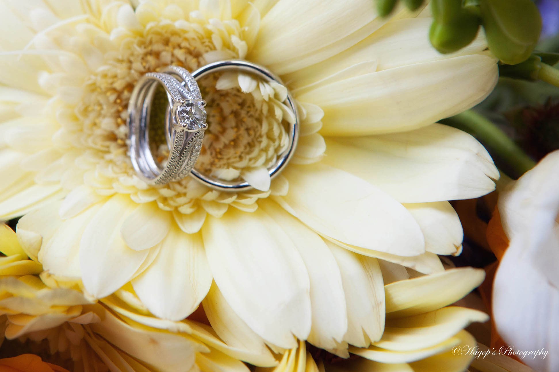 wedding rings in a flower