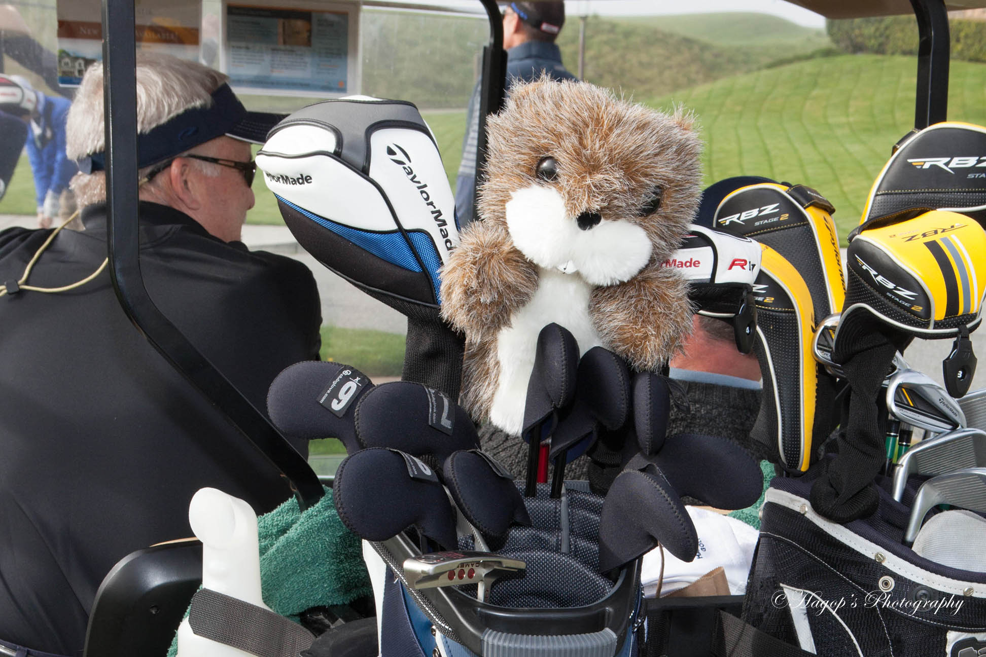 a golfer cart with a stuffed animal