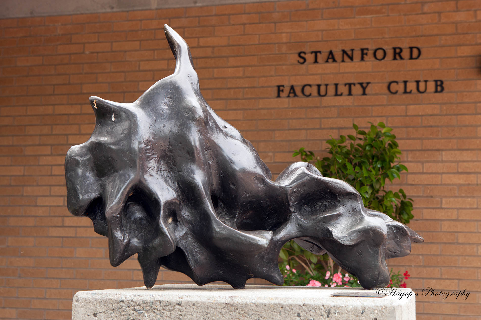 statue at the entrance of stanford faculty club